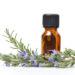 精油の正しい保管方法。劣化を防いで最後までいい香りのままで使おう